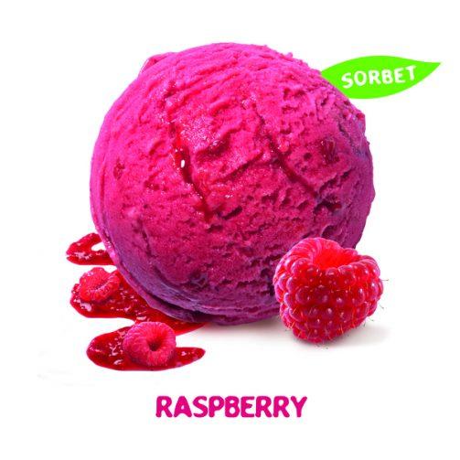 Movenpick Raspberry Sorbet